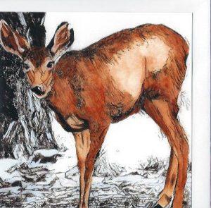 red-mule-deer-card