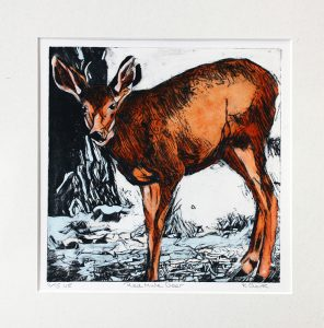 red-mule-deer-original-dry-point-etching-varied-edtion-515-hand-painted-in-watercolour