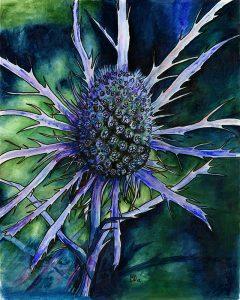 Sea Holly acrylic Rosemary Dodgson